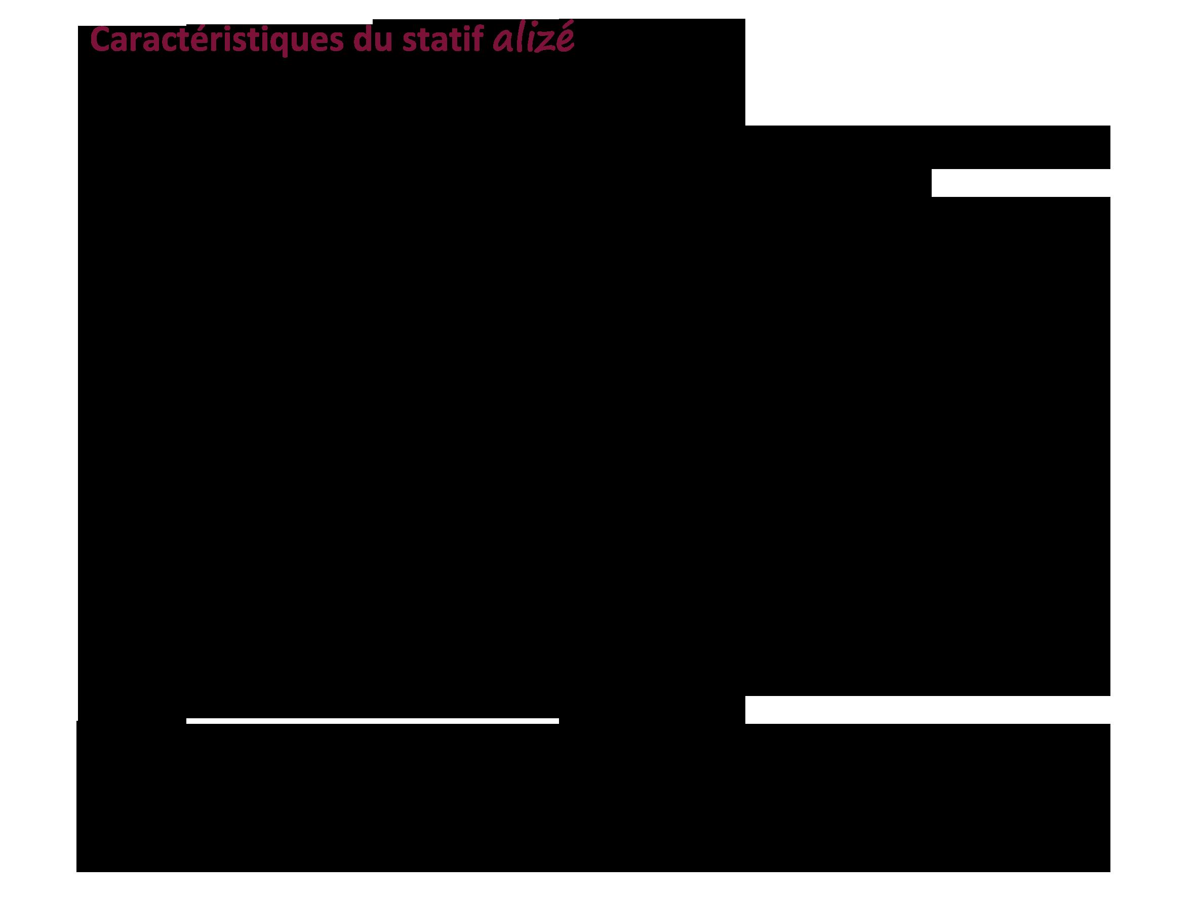 ALIZE-MT-DR-IDETEC-Fr-DATA-4.png